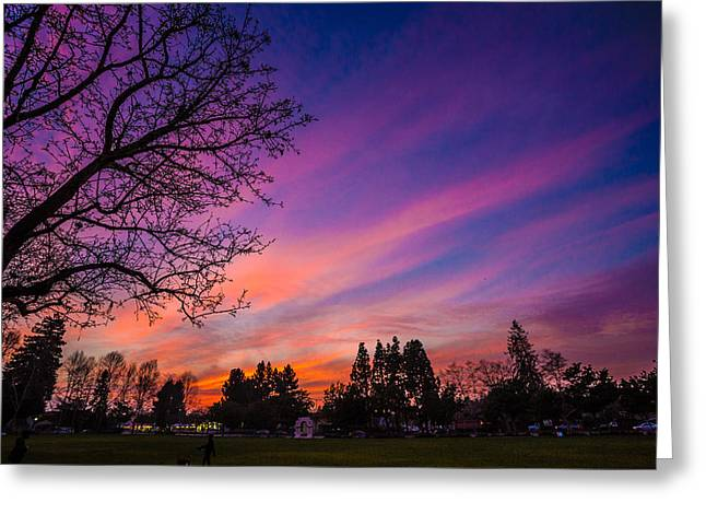 Mike Lee Greeting Cards - Magical Sky Greeting Card by Mike Lee
