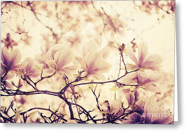 Texture Floral Pyrography Greeting Cards - Magnolia Greeting Card by Jelena Jovanovic