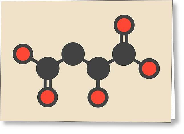 Malic Acid Fruit Acid Molecule Greeting Card by Molekuul