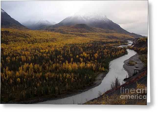 Matanuska Greeting Cards - Matanuska River, Alaska Greeting Card by Mark Newman