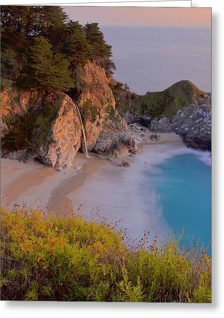 Big Sur California Greeting Cards - McWay Falls At Sunset Greeting Card by Stephen  Vecchiotti