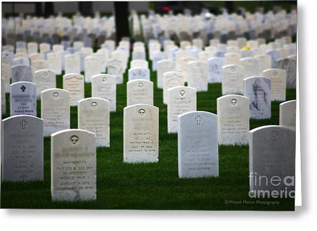 Bravery Greeting Cards - Memorial Day Remembering Those Who Gave The Ultimate Sacrifice Greeting Card by Wayne Moran
