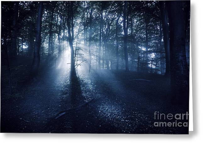 Emergence Greeting Cards - Misty Rays In A Dark Forest, Liselund Greeting Card by Evgeny Kuklev