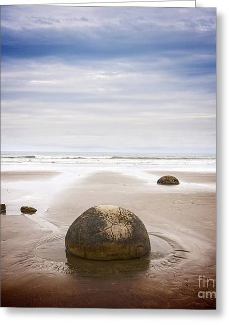Seacapes Greeting Cards - Moeraki Boulders Otago New Zealand Greeting Card by Colin and Linda McKie