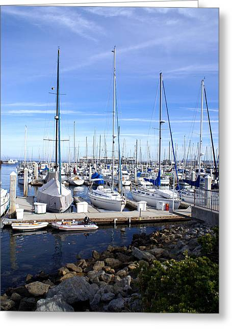 Barbara Snyder Greeting Cards - Monterey Harbor California Greeting Card by Barbara Snyder