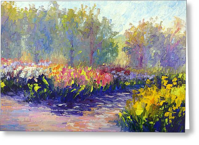 Terry Chacon Greeting Cards - Morning Light Greeting Card by Terry  Chacon