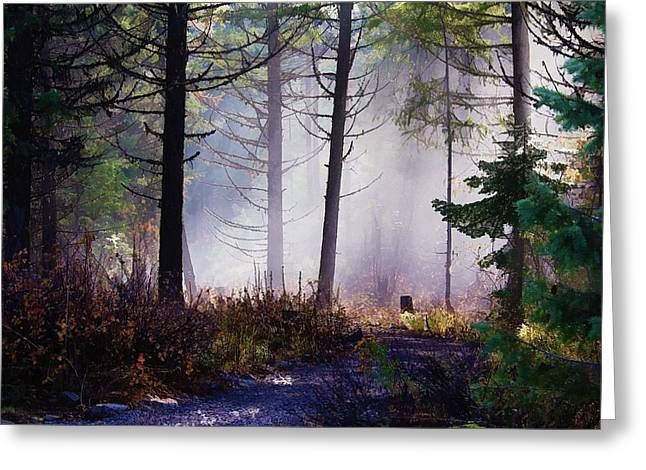 Lanscape Greeting Cards - Morning Mist Greeting Card by Donna Duckworth