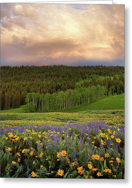 Mountain Color Greeting Card by Leland D Howard