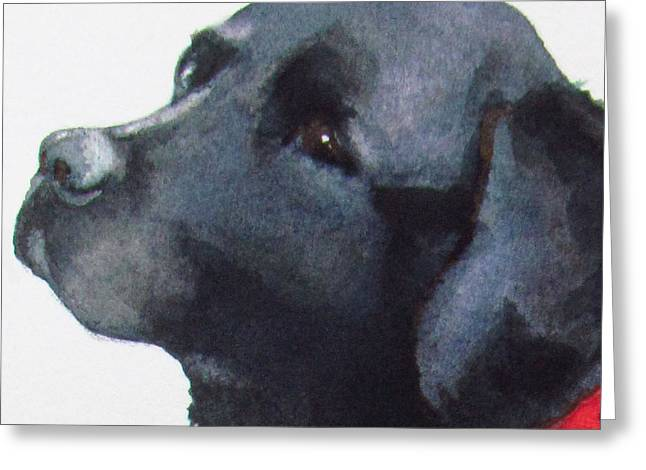 Framed Dog House Print Greeting Cards - Moxie Greeting Card by Sarah Buell  Dowling