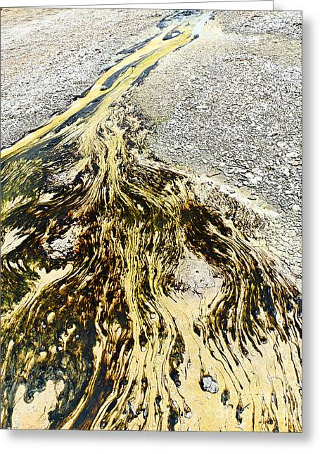 Algal Greeting Cards - Natures Inkblot Test - Abstract runoff of a hot spring with algae and bacteria. Greeting Card by Jamie Pham