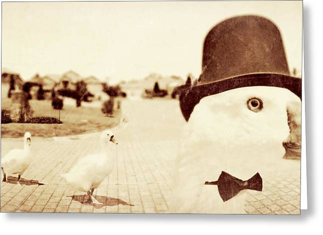 Bowtie Greeting Cards - Natures Peaking Order Greeting Card by Ryan Jorgensen