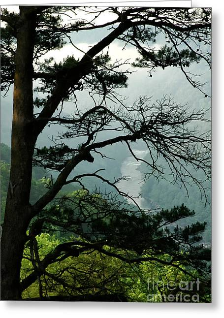 Fayette County Greeting Cards - New River Gorge National River Greeting Card by Thomas R Fletcher