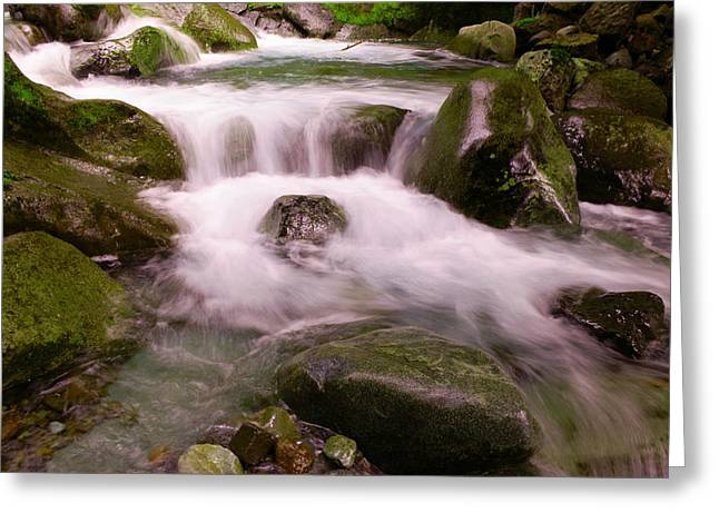 Water In Creek Greeting Cards - Nickle Creek Greeting Card by Jeff  Swan