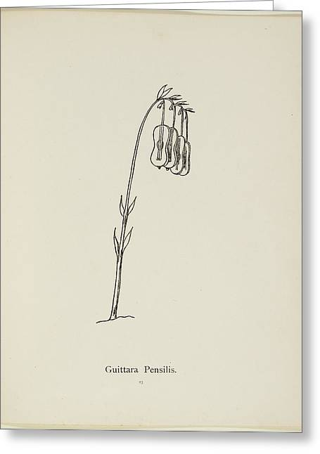 Nonsense Botany By Edward Lear Greeting Card by British Library