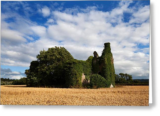 Norrisland Castle, County Waterford Greeting Card by Panoramic Images