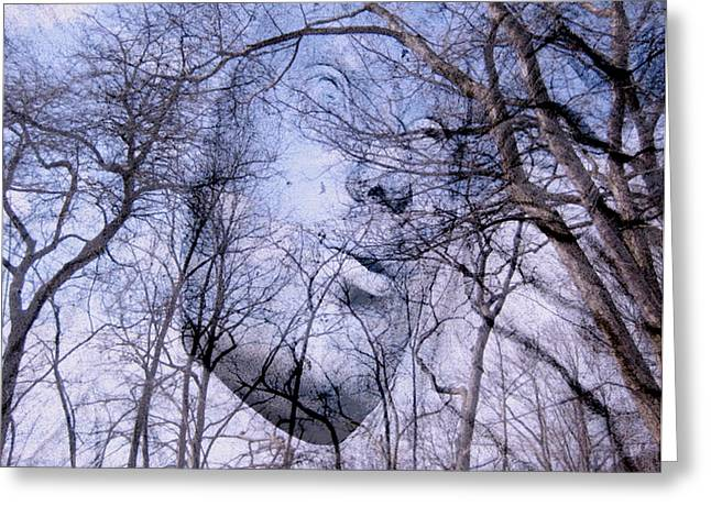 Winter Solstice Greeting Cards Greeting Cards - North Wind Greeting Card by Kathy Bassett