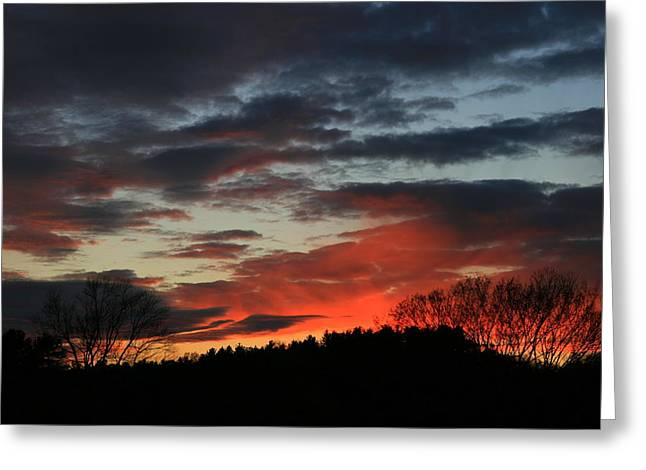 Landscape Photos Greeting Cards - November Dream  Greeting Card by Neal  Eslinger