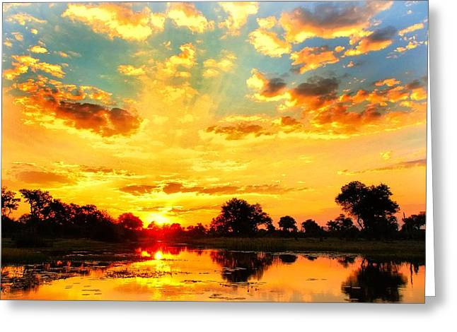 River Flooding Greeting Cards - Okavango Delta Sunset Greeting Card by Amanda Stadther