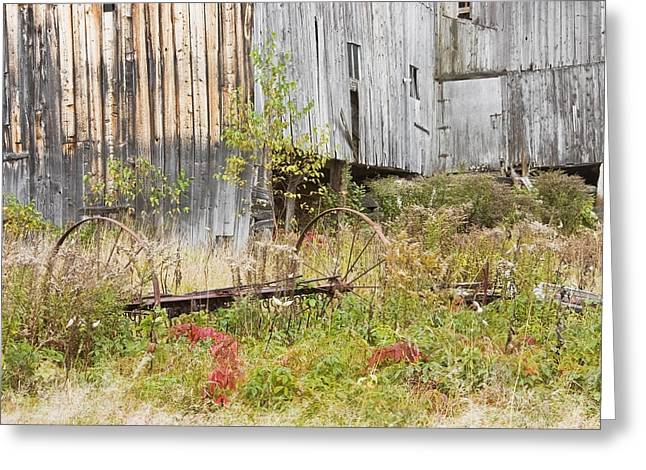 Buildings Greeting Cards - Old Barn in Fall Maine Greeting Card by Keith Webber Jr