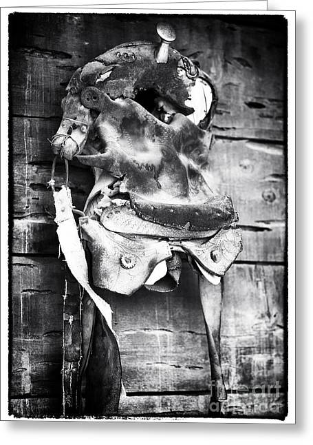 Contemporary Cowboy Gallery Greeting Cards - Old Friend Greeting Card by John Rizzuto