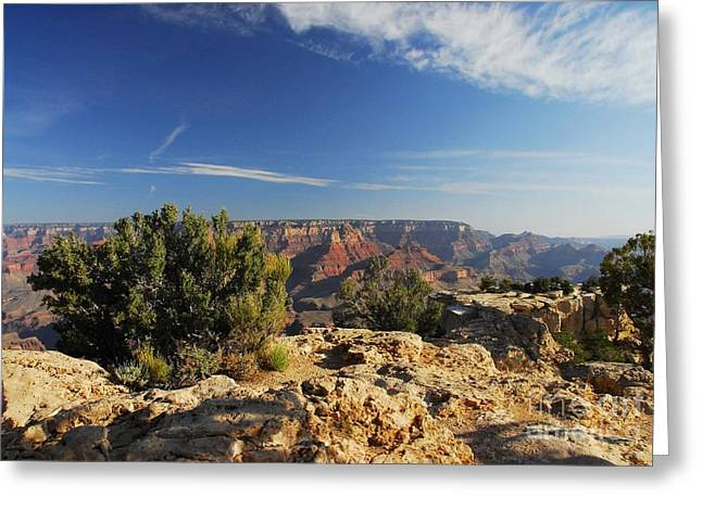 The Grand Canyon Greeting Cards - On The Rim 2 Greeting Card by Mel Steinhauer