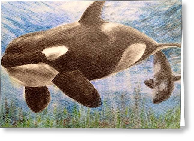 Wild Life Pastels Greeting Cards - Orca Greeting Card by Keiko Olds