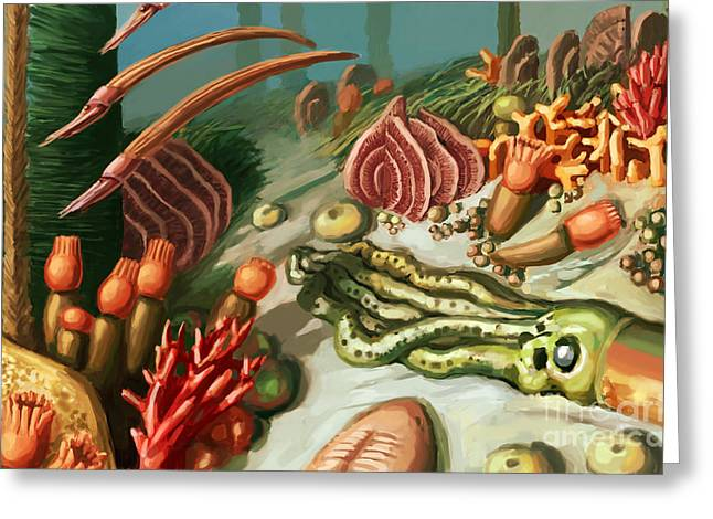Aquatic Greeting Cards - Ordovician Period Scene Greeting Card by Spencer Sutton