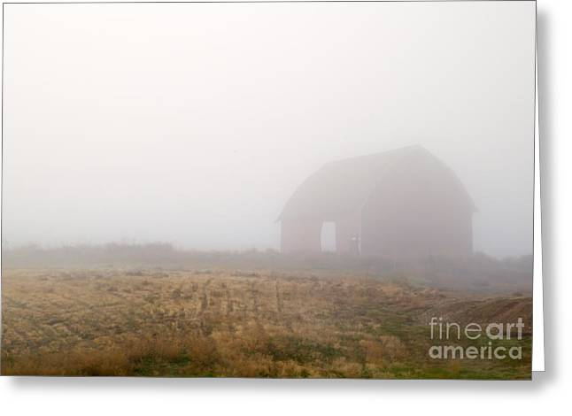 Red Barn Greeting Cards - Out of the Fog Greeting Card by Mike  Dawson