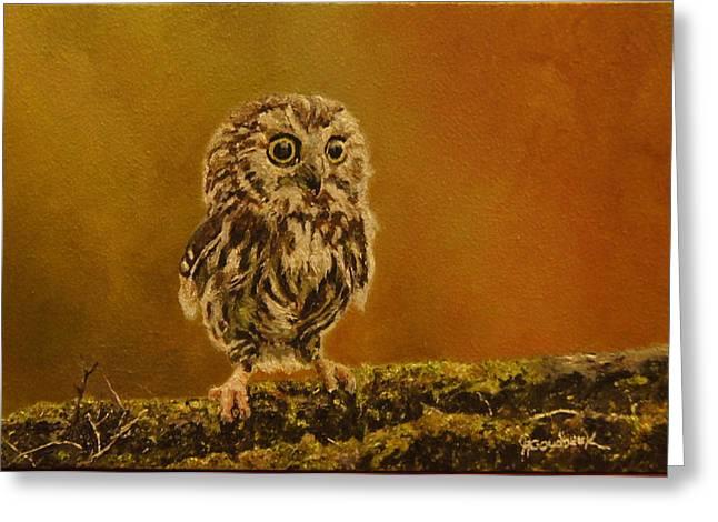 Natuur Greeting Cards - Owl... Greeting Card by Erna Goudbeek