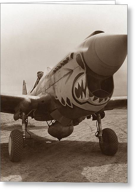 Allied Greeting Cards - P-40 Warhawk Greeting Card by War Is Hell Store
