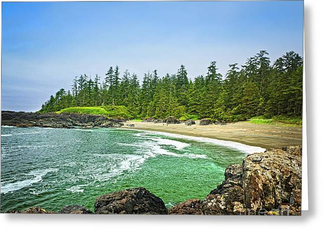 Beach Scenery Greeting Cards - Pacific ocean coast on Vancouver Island Greeting Card by Elena Elisseeva