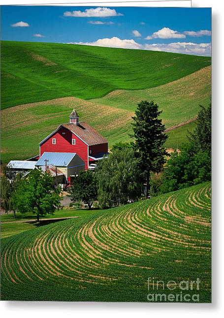 Rural Scenery Greeting Cards - Palouse Red Barn Greeting Card by Inge Johnsson