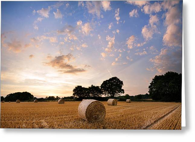 Hay Bales Greeting Cards - Panorama landscape hay bales in field during beautiful Summer su Greeting Card by Matthew Gibson