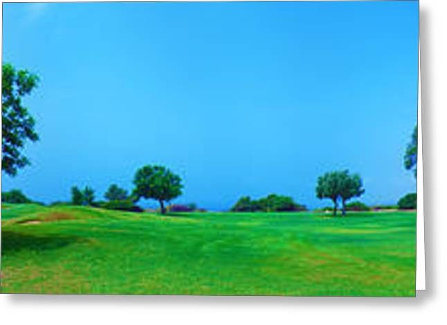 Olive Green Greeting Cards - Panorama of Golf field sea and olives Greeting Card by Rostislav Ageev