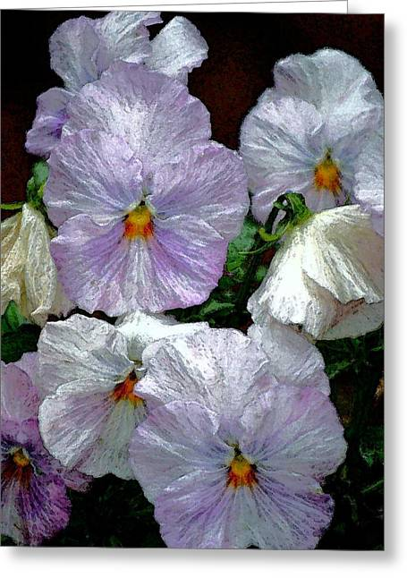 Pansy 4 Greeting Card by Pamela Cooper
