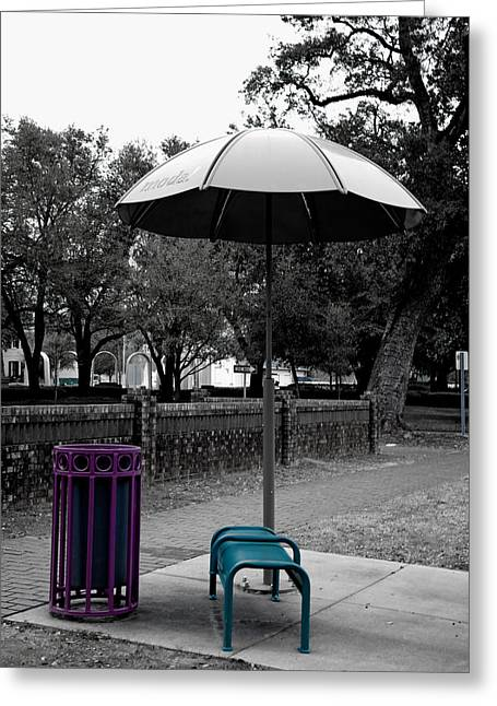 Stone Bench Greeting Cards - Park in Mobile Alabama Greeting Card by Mountain Dreams