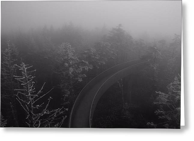 Misty Pine Photography Greeting Cards - Path To The Unknown Greeting Card by Dan Sproul