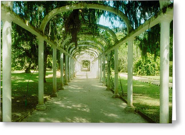 Garden Scene Photographs Greeting Cards - Pathway In A Botanical Garden, Jardim Greeting Card by Panoramic Images