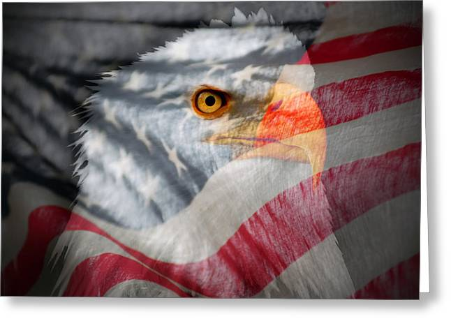 Patriot Greeting Card by Ron Day