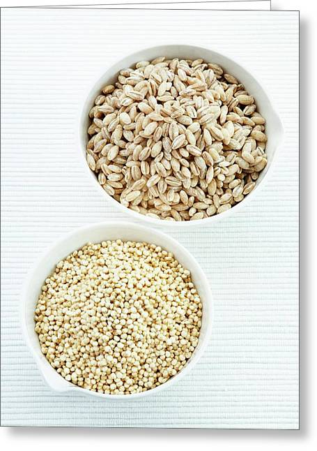 Pearl Barley And Quinoa Seeds Greeting Card by Gustoimages