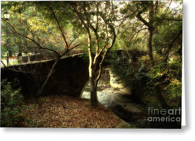 Uc California Greeting Cards - Pedestrian Bridge And Strawberry Creek  . 7D10152 Greeting Card by Wingsdomain Art and Photography