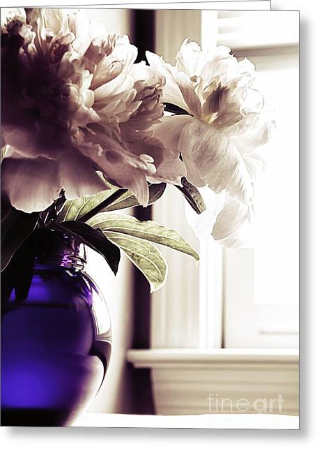 Window Light Greeting Cards - Peony Greeting Card by HD Connelly