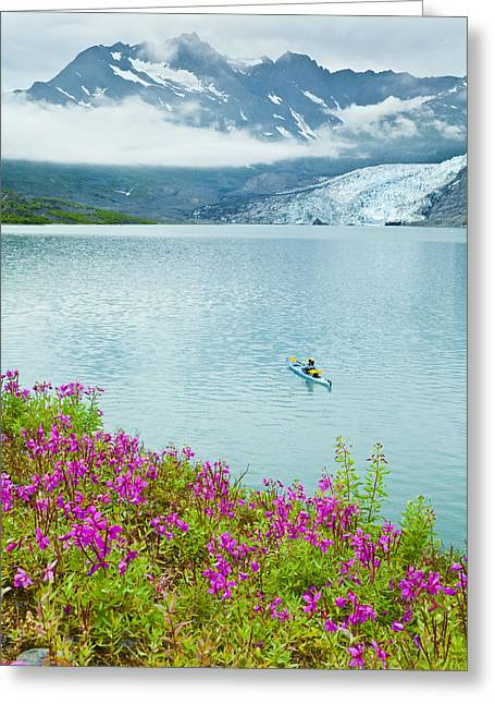 Sea Kayak Greeting Cards - Person Sea Kayaking In Shoup Bay In Greeting Card by Michael DeYoung