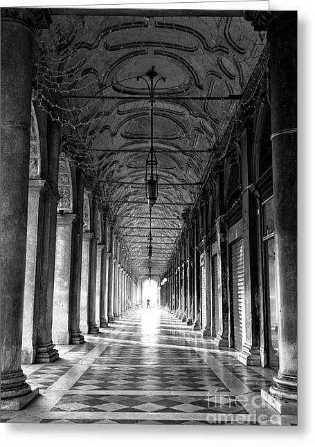 Photograph Of Artist Greeting Cards - Photographing Venice Greeting Card by John Rizzuto