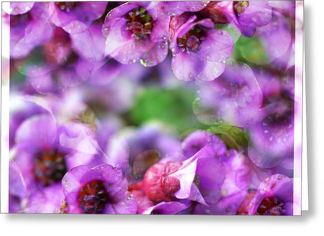 Vivid Colour Mixed Media Greeting Cards - Pink flowers Greeting Card by Toppart Sweden