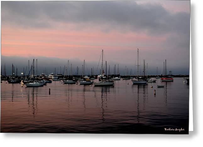 Barbara Snyder Greeting Cards - Pink Reflections Greeting Card by Barbara Snyder