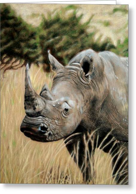 Africa Pastels Greeting Cards - Plains Warrior Greeting Card by Carol McCarty