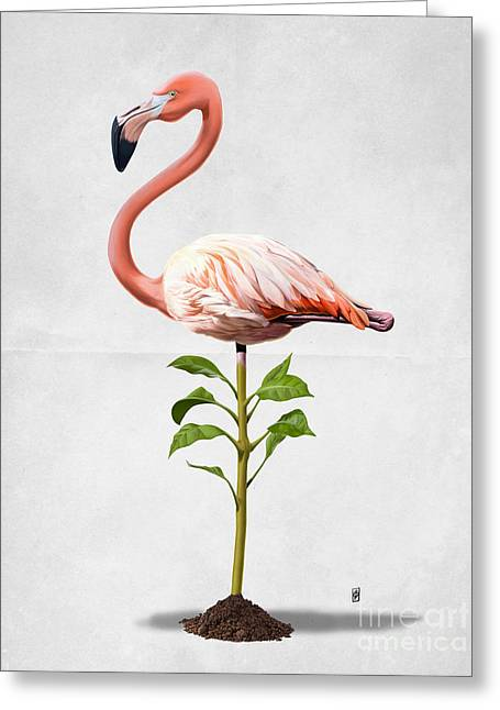Illustration Greeting Cards - Planted Wordless Greeting Card by Rob Snow