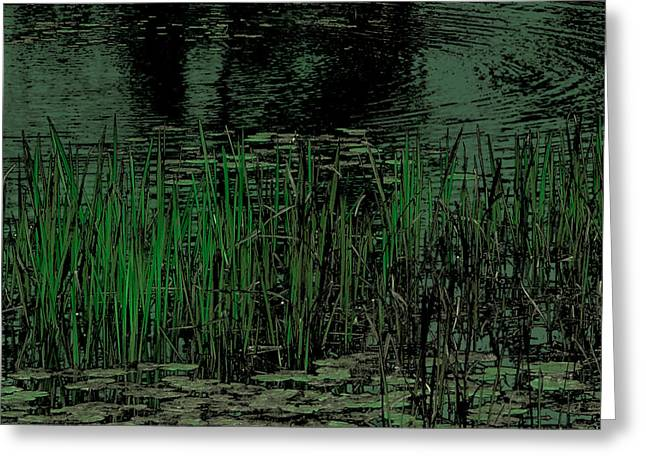 Surreal Landscape Greeting Cards - Pond Grasses Greeting Card by David Patterson