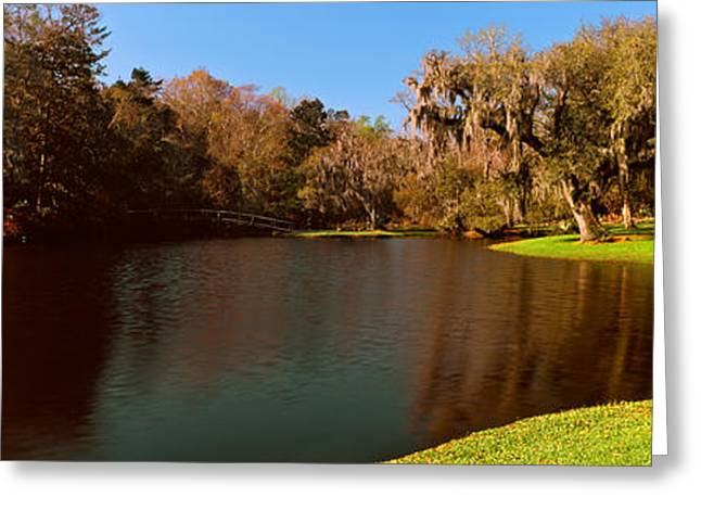 Middleton Greeting Cards - Pond In A Garden, Middleton Place Greeting Card by Panoramic Images